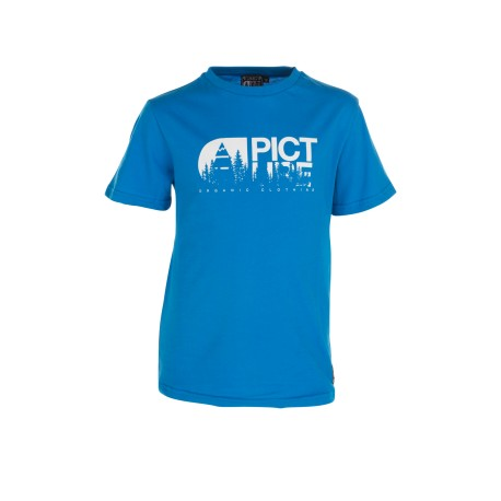 TEE SHIRT PICTURE KID - BASEMENT TREE - BLUE