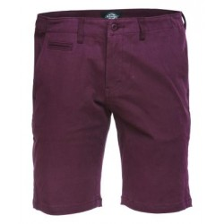 SHORT DICKIES PALM SPRINGS - MAROON