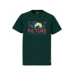 T-SHIRT PICTURE ORGANIC KIDS REED - EMERALD