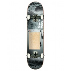 "SKATEBOARD COMPLET GLOBE G1 BEYOND 8.0"" - NATURAL GREY"