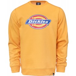 SWEAT DICKIES PITTSBURGH - AMBER