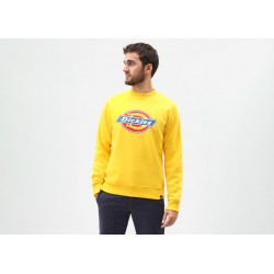 SWEAT DICKIES PITTSBURGH - SPECTRA YELLOW