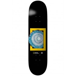 BOARD ELEMENT NAT GEO MOLECU 8.25