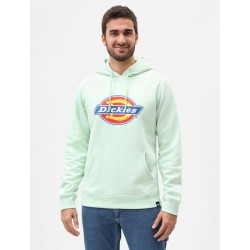 SWEAT DICKIES SAN ANTONIO HOODY - MINT