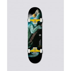 BOARD COMPLETE ELEMENT NAT GEO IGUANA 8.0