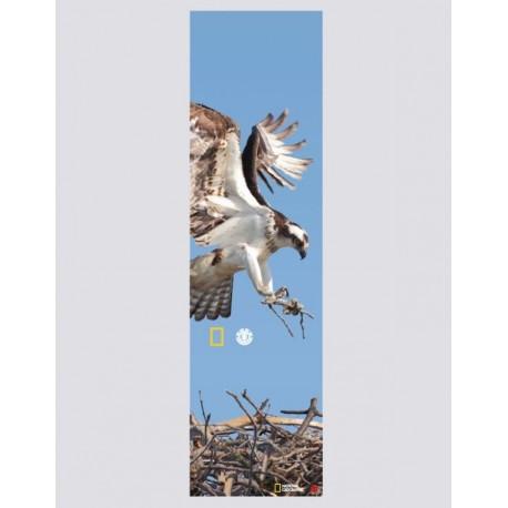 GRIP ELEMENT NAT GEO SPIRIT - EAGLE