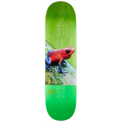 BOARD MINI-LOGO POISON TREE FROG - 8.25