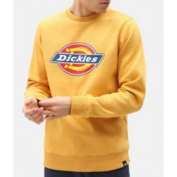 SWEAT DICKIES PITTSBURGH - APRICOT