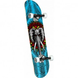 SKATE COMPLET POWELL PERALTA VALLELY ELEPHANT BLUE - 8.0