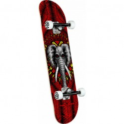 SKATE COMPLET POWELL PERALTA VALLELY ELEPHANT RED - 8.25