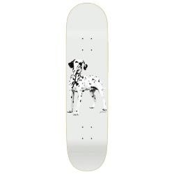 BOARD QUASI GOOD BOY - 8.0